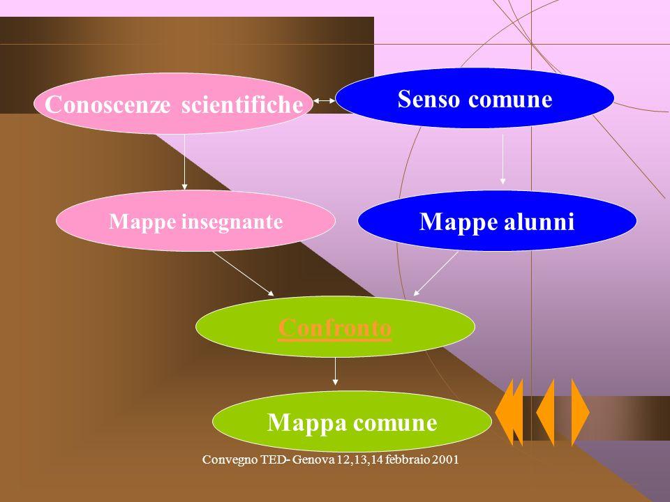 Convegno TED- Genova 12,13,14 febbraio 2001 Le interazioni Insegnante Alunno Curricolo Ambiente