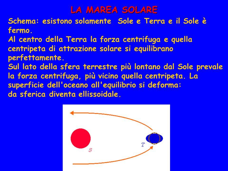 LA MAREA SOLARE Schema: esistono solamente Sole e Terra e il Sole è fermo. Al centro della Terra la forza centrifuga e quella centripeta di attrazione