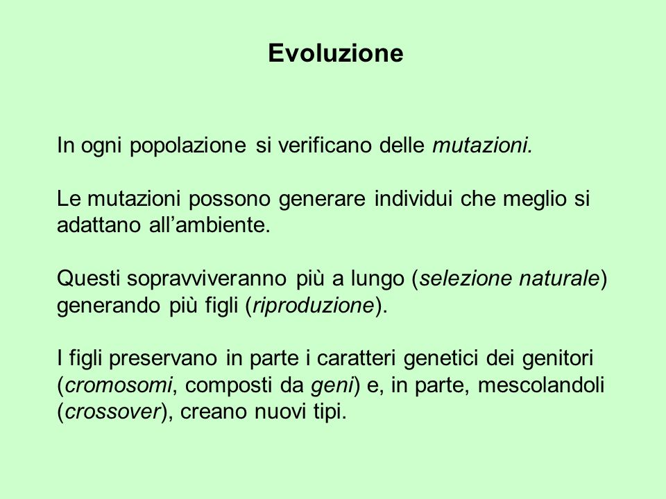 In ogni popolazione si verificano delle mutazioni.