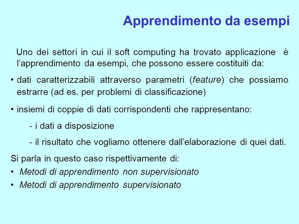 Uno dei settori in cui il soft computing ha trovato applicazione è lapprendimento da esempi, che possono essere costituiti da: dati caratterizzabili a
