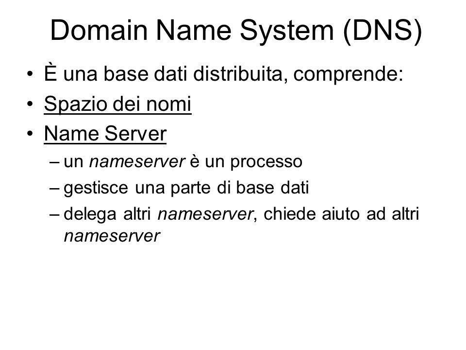 Domain Name System (DNS) È una base dati distribuita, comprende: Spazio dei nomi Name Server –un nameserver è un processo –gestisce una parte di base dati –delega altri nameserver, chiede aiuto ad altri nameserver