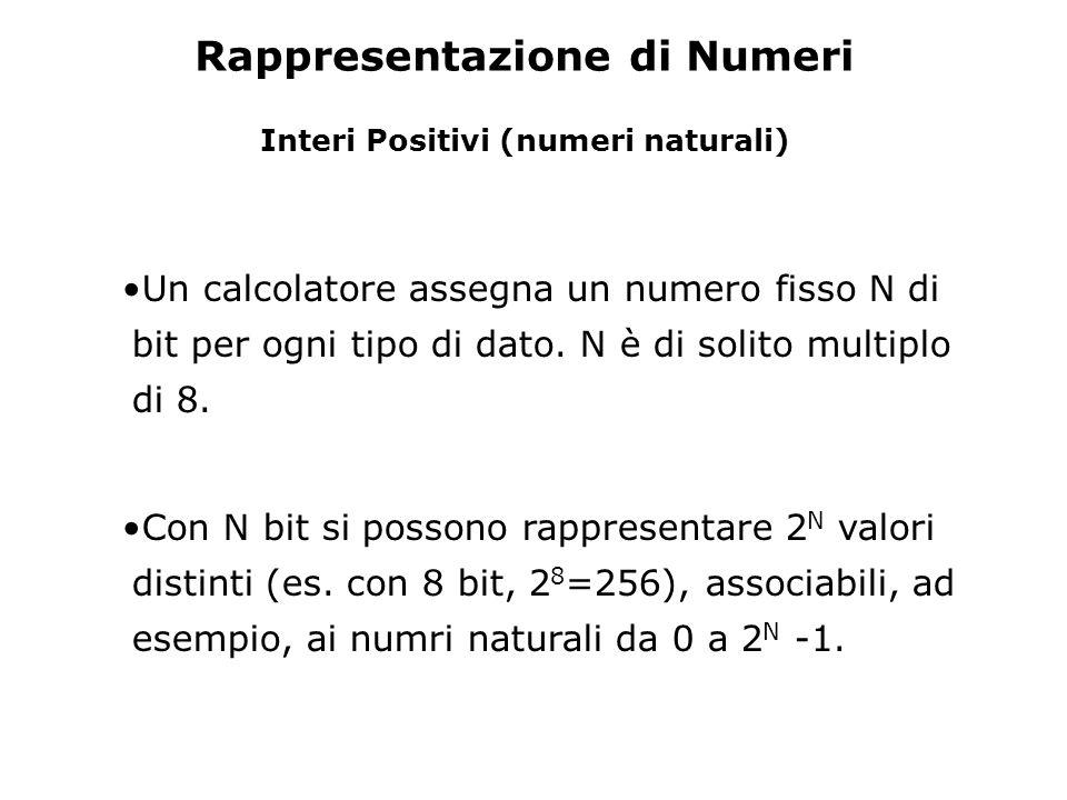 Rappresentazione di Numeri Interi Positivi (numeri naturali) Un calcolatore assegna un numero fisso N di bit per ogni tipo di dato. N è di solito mult