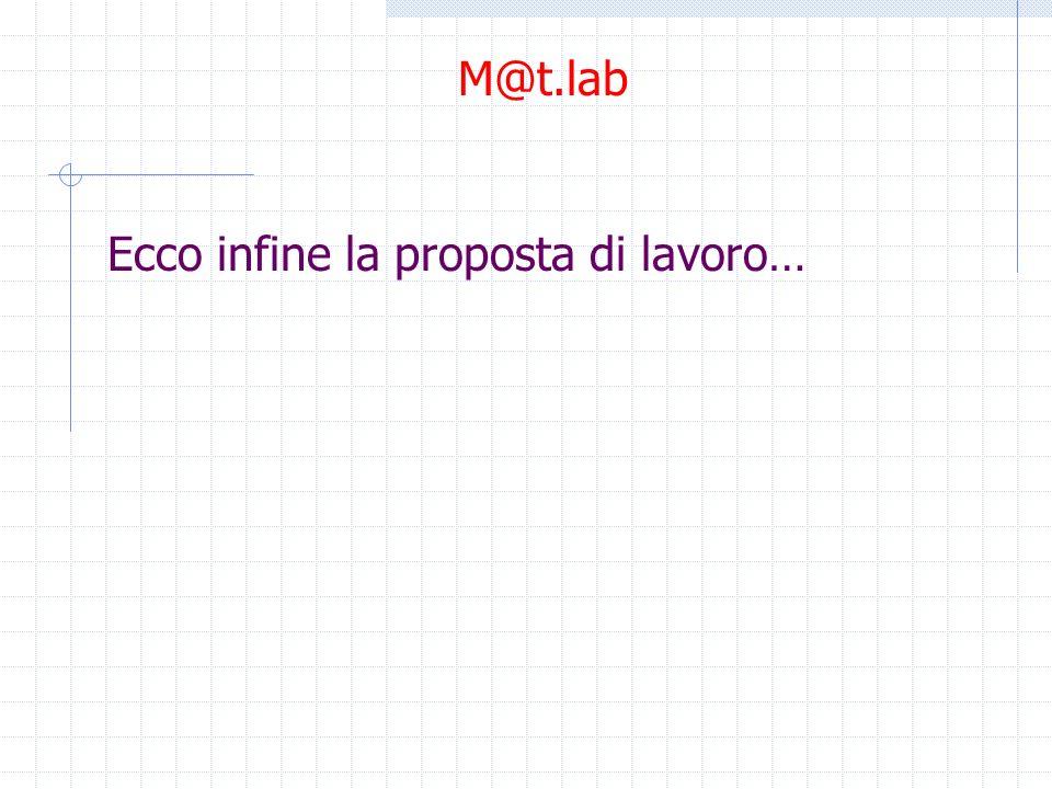 Ecco infine la proposta di lavoro… M@t.lab