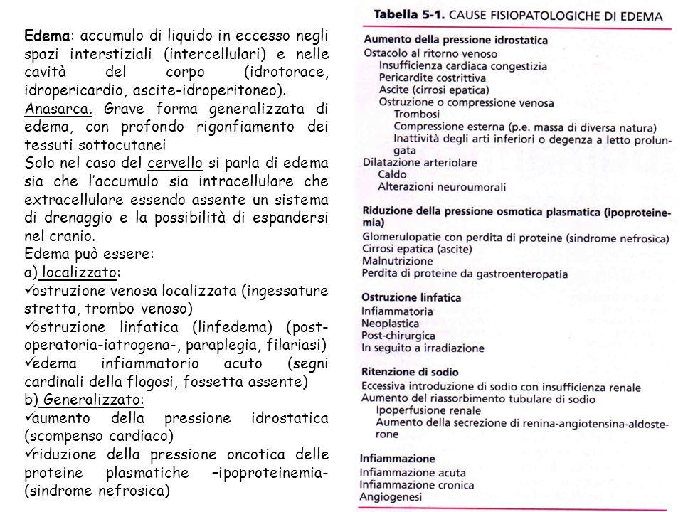 Edema: accumulo di liquido in eccesso negli spazi interstiziali (intercellulari) e nelle cavità del corpo (idrotorace, idropericardio, ascite-idroperi