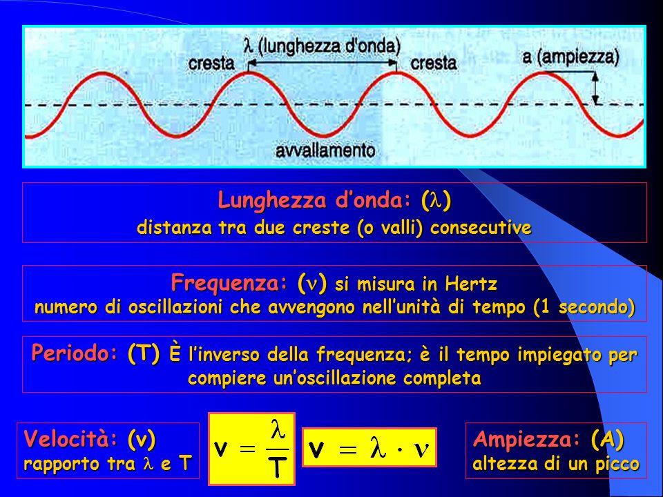 Lunghezza donda: ( ) distanza tra due creste (o valli) consecutive Frequenza: ( ) si misura in Hertz numero di oscillazioni che avvengono nellunità di tempo (1 secondo) Periodo: (T) È linverso della frequenza; è il tempo impiegato per compiere unoscillazione completa Ampiezza: (A) altezza di un picco Velocità: (v) rapporto tra e T
