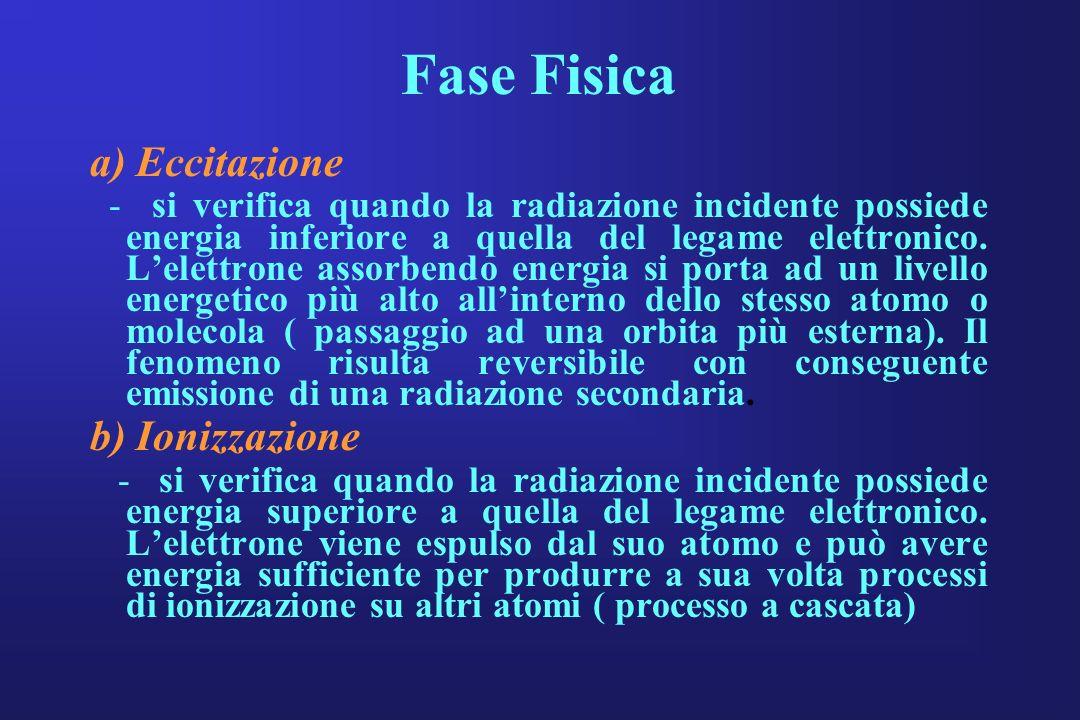 Fase Fisica a) Eccitazione - si verifica quando la radiazione incidente possiede energia inferiore a quella del legame elettronico. Lelettrone assorbe