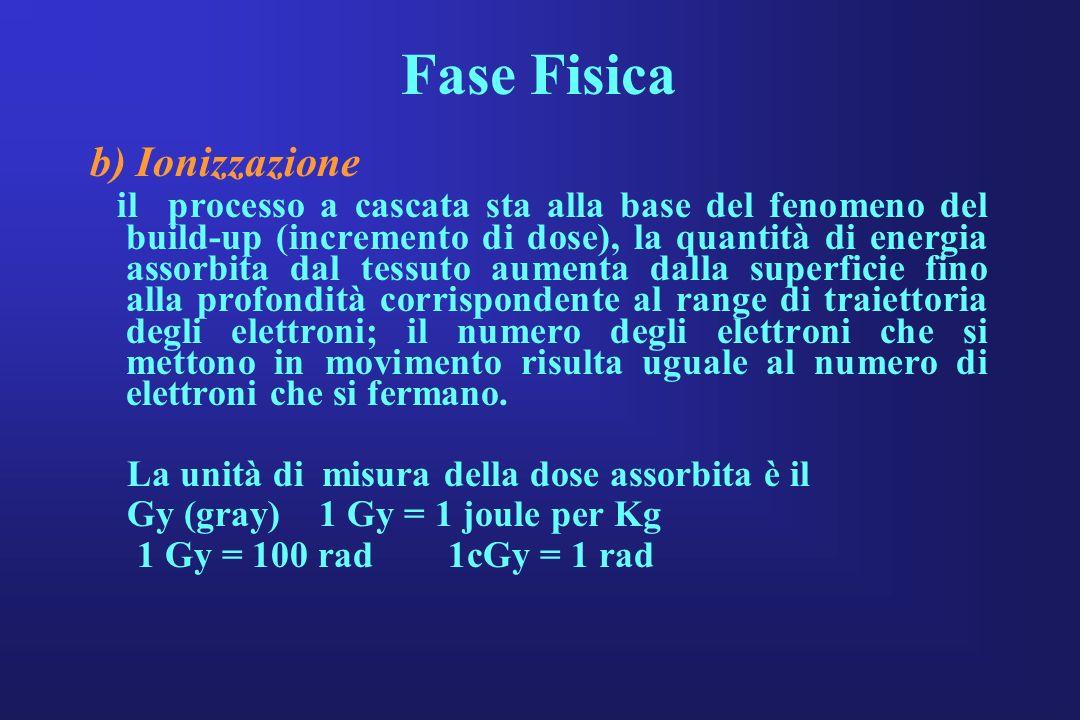 Fase Fisica b) Ionizzazione il processo a cascata sta alla base del fenomeno del build-up (incremento di dose), la quantità di energia assorbita dal t