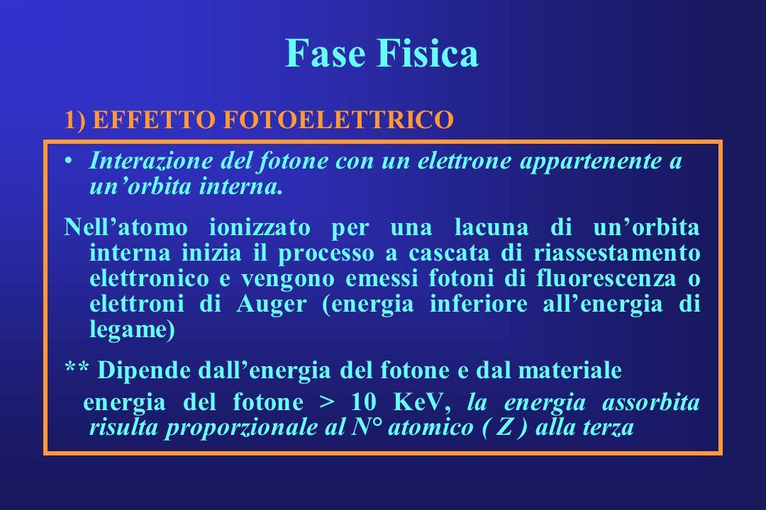 Fase Fisica 1) EFFETTO FOTOELETTRICO Interazione del fotone con un elettrone appartenente a unorbita interna. Nellatomo ionizzato per una lacuna di un