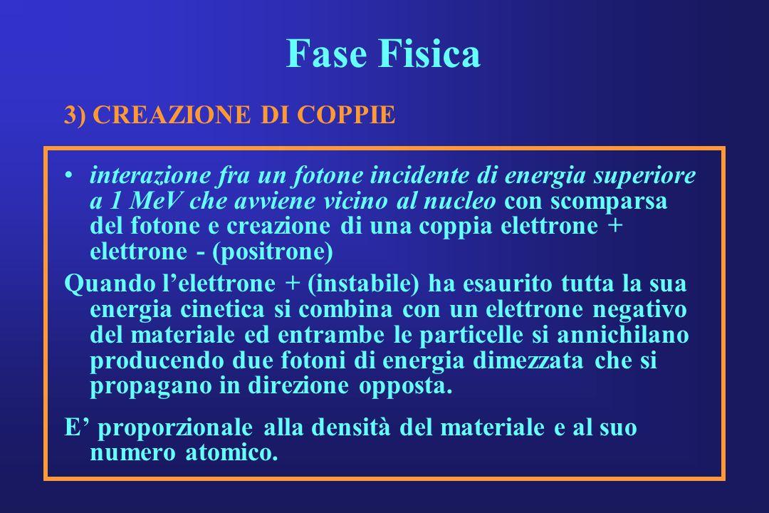 Fase Fisica 3) CREAZIONE DI COPPIE interazione fra un fotone incidente di energia superiore a 1 MeV che avviene vicino al nucleo con scomparsa del fot
