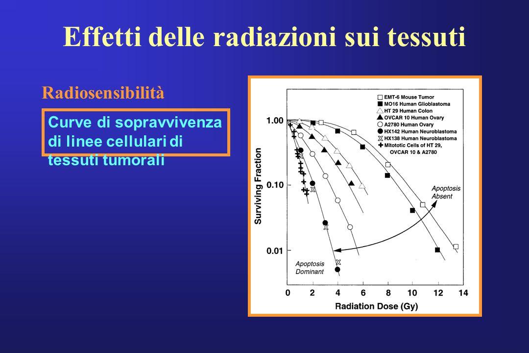 Effetti delle radiazioni sui tessuti Curve di sopravvivenza di linee cellulari di tessuti tumorali Radiosensibilità