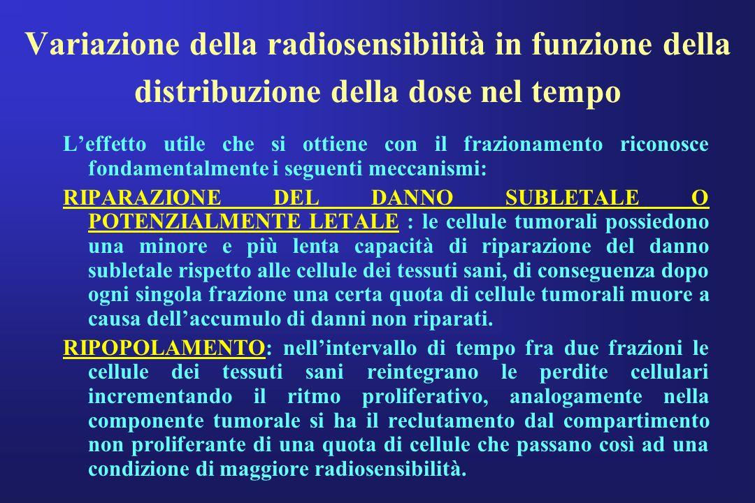 Variazione della radiosensibilità in funzione della distribuzione della dose nel tempo Leffetto utile che si ottiene con il frazionamento riconosce fo