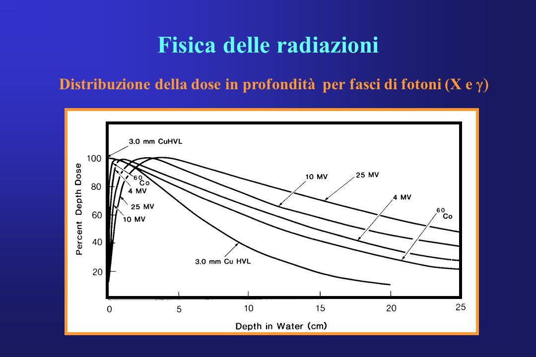 Fisica delle radiazioni Distribuzione della dose in profondità per fasci di fotoni (X e