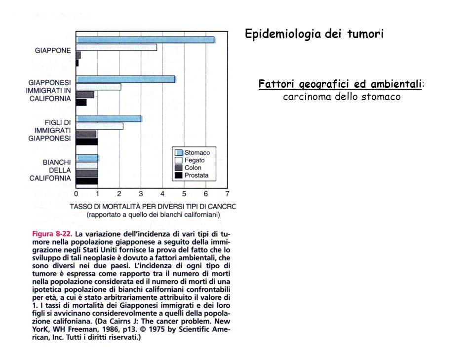 Fattori geografici ed ambientali: carcinoma dello stomaco Epidemiologia dei tumori