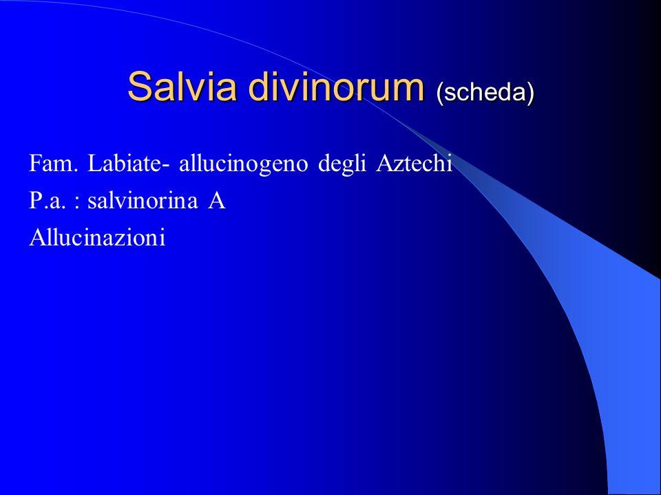 Salvia divinorum (scheda) Fam. Labiate- allucinogeno degli Aztechi P.a. : salvinorina A Allucinazioni