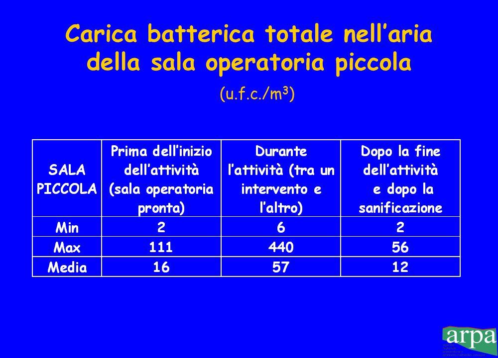 Carica microbica media nellaria della sala grande e valori di riferimento Percentuale dabbattimento dopo le pulizie: 65 %