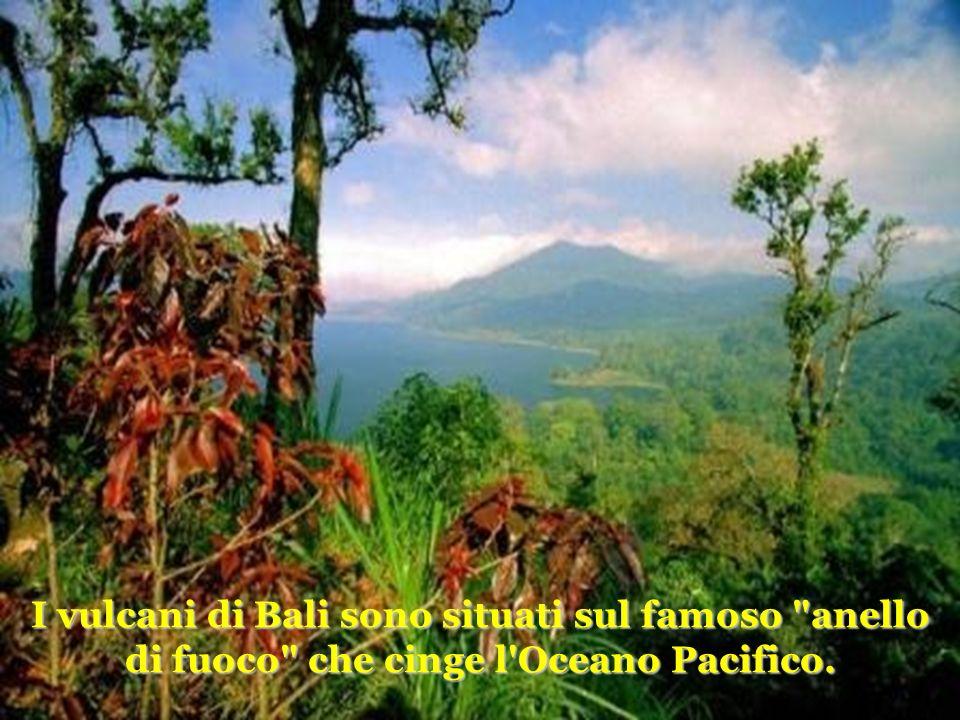 I vulcani di Bali sono situati sul famoso anello di fuoco che cinge l Oceano Pacifico.