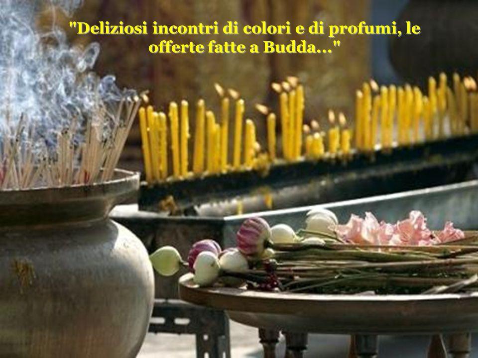 Deliziosi incontri di colori e di profumi, le offerte fatte a Budda...