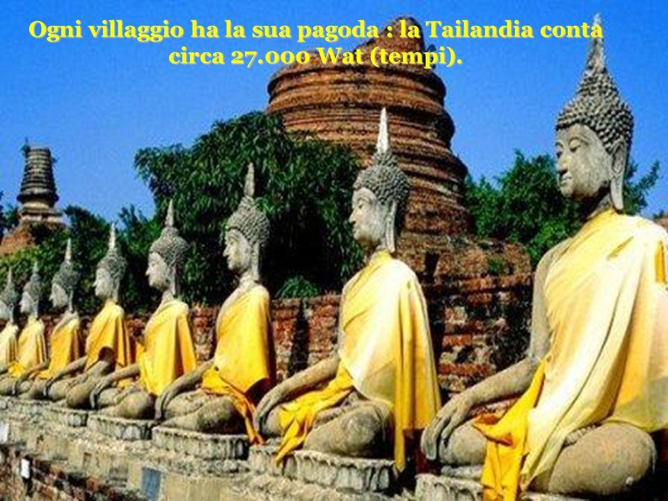 Ogni villaggio ha la sua pagoda : la Tailandia conta circa 27.000 Wat (tempi).