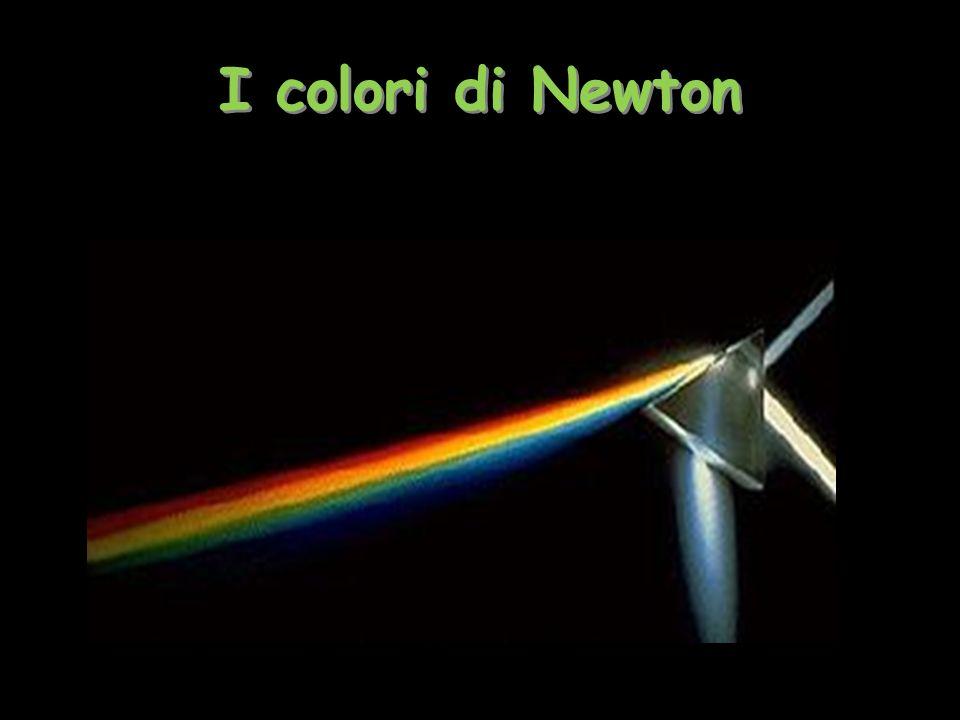 I colori di Newton Tiziana Segalini 20092