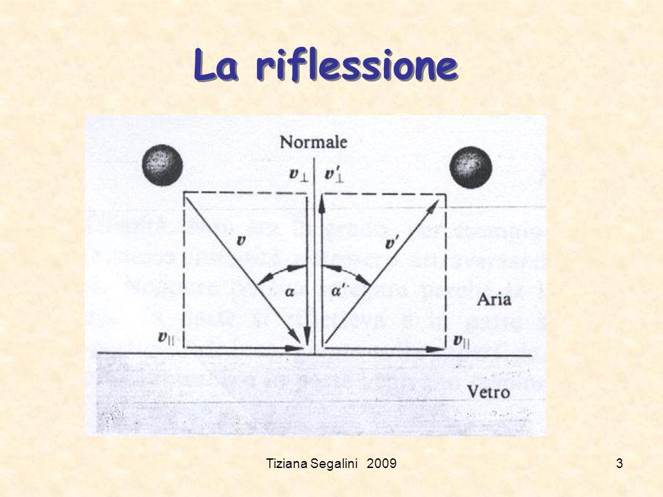 La riflessione Tiziana Segalini 20093
