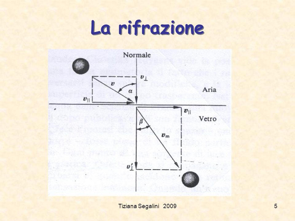 La rifrazione Tiziana Segalini 20095