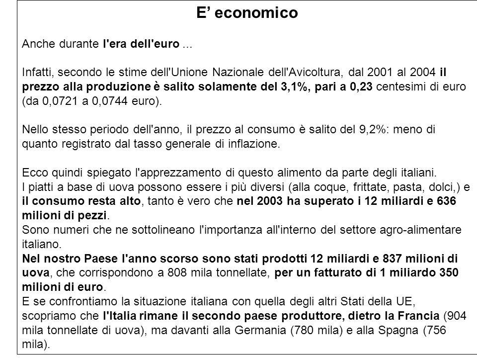 E economico Anche durante l'era dell'euro... Infatti, secondo le stime dell'Unione Nazionale dell'Avicoltura, dal 2001 al 2004 il prezzo alla produzio