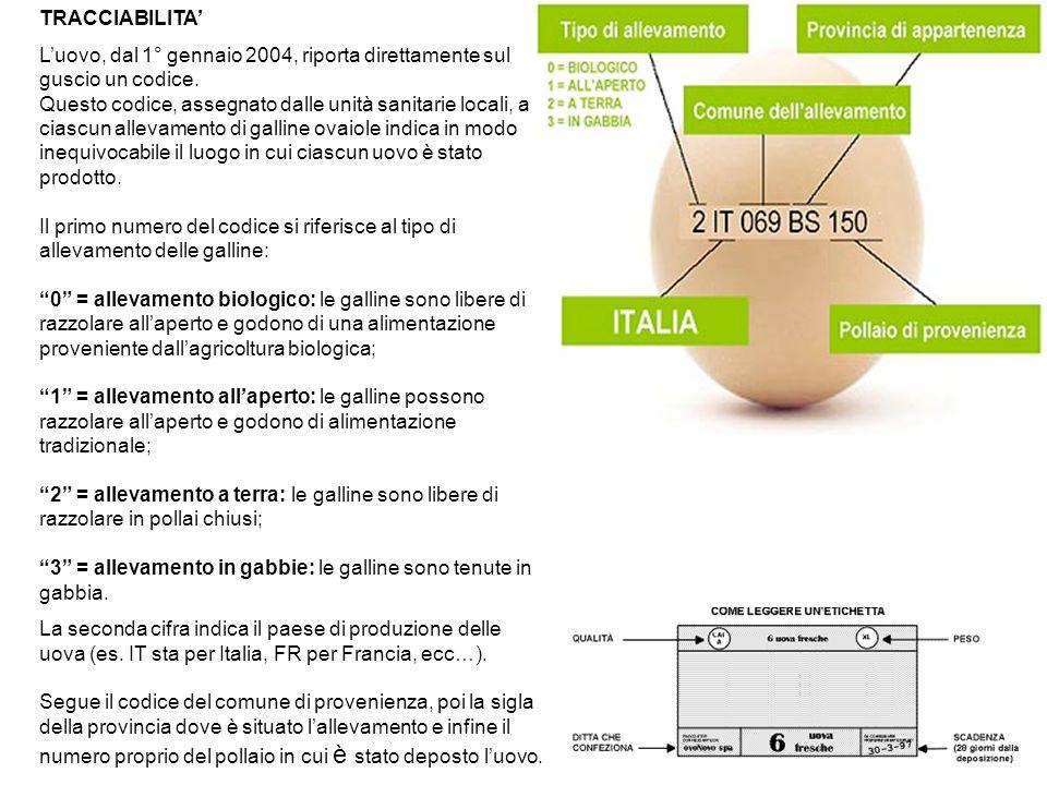 TRACCIABILITA Luovo, dal 1° gennaio 2004, riporta direttamente sul guscio un codice. Questo codice, assegnato dalle unità sanitarie locali, a ciascun