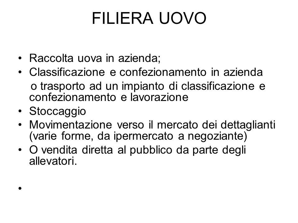 TRACCIABILITA Luovo, dal 1° gennaio 2004, riporta direttamente sul guscio un codice.