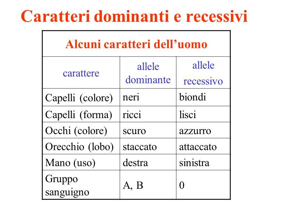 Alcuni caratteri delluomo carattere allele dominante allele recessivo Capelli (colore) neribiondi Capelli (forma) riccilisci Occhi (colore) scuroazzur