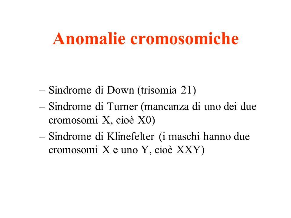 Anomalie cromosomiche –Sindrome di Down (trisomia 21) –Sindrome di Turner (mancanza di uno dei due cromosomi X, cioè X0) –Sindrome di Klinefelter (i m