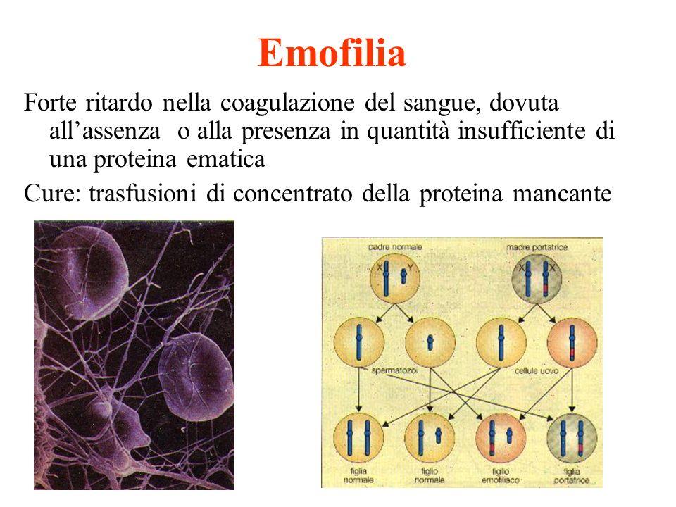 Emofilia Forte ritardo nella coagulazione del sangue, dovuta allassenza o alla presenza in quantità insufficiente di una proteina ematica Cure: trasfu
