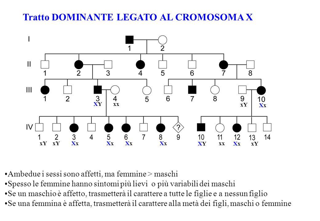 Tratto DOMINANTE LEGATO AL CROMOSOMA X Ambedue i sessi sono affetti, ma femmine > maschi Spesso le femmine hanno sintomi più lievi o più variabili dei