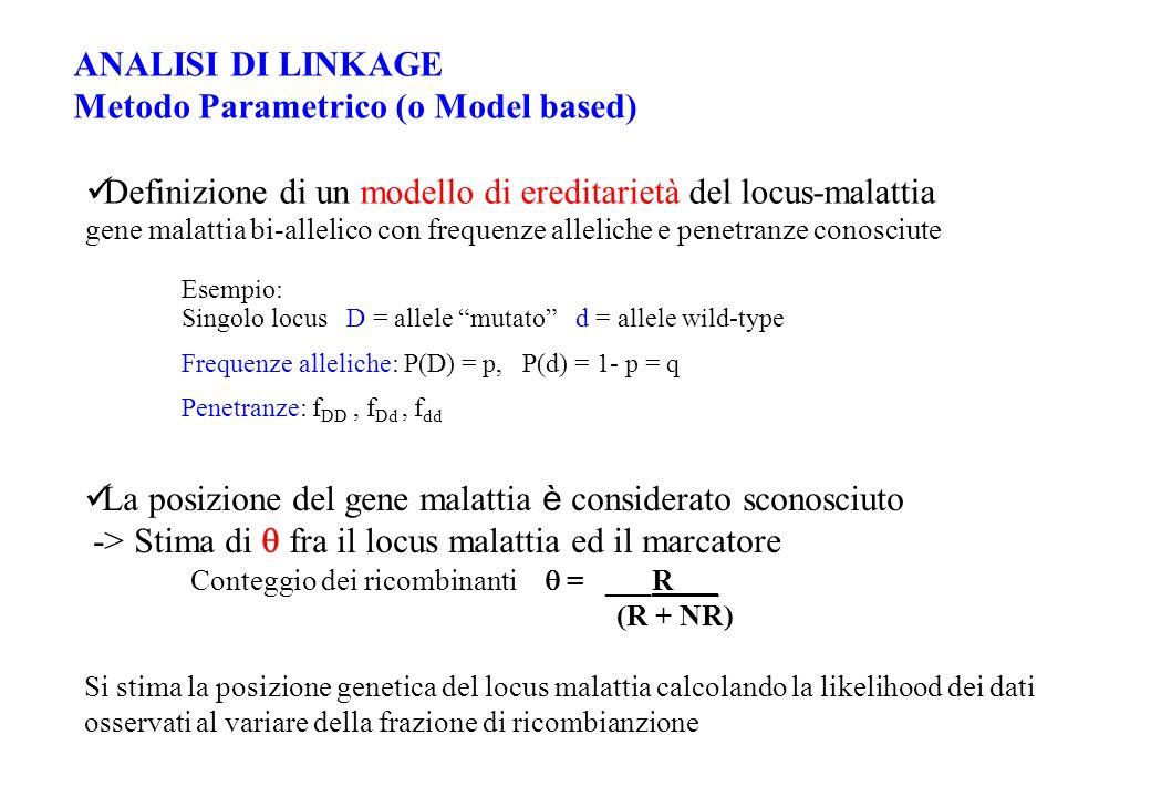 ANALISI DI LINKAGE Metodo Parametrico (o Model based) Definizione di un modello di ereditarietà del locus-malattia gene malattia bi-allelico con frequ