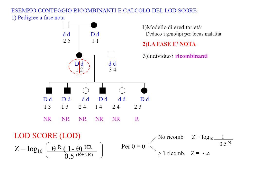 d D d d 2 51 1 23 4 1 3 1 3 2 4 1 4 2 4 2 3 NR NR NR NR NR R Per = 0 No ricomb Z = log 10 1 0.5 N > 1 ricomb. Z = - Z = log 10 R ( 1- ) NR 0.5 (R+NR)