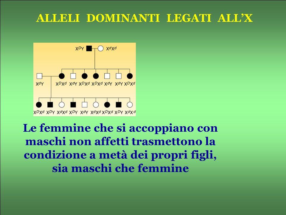 ALLELI DOMINANTI LEGATI ALLX Le femmine che si accoppiano con maschi non affetti trasmettono la condizione a metà dei propri figli, sia maschi che fem