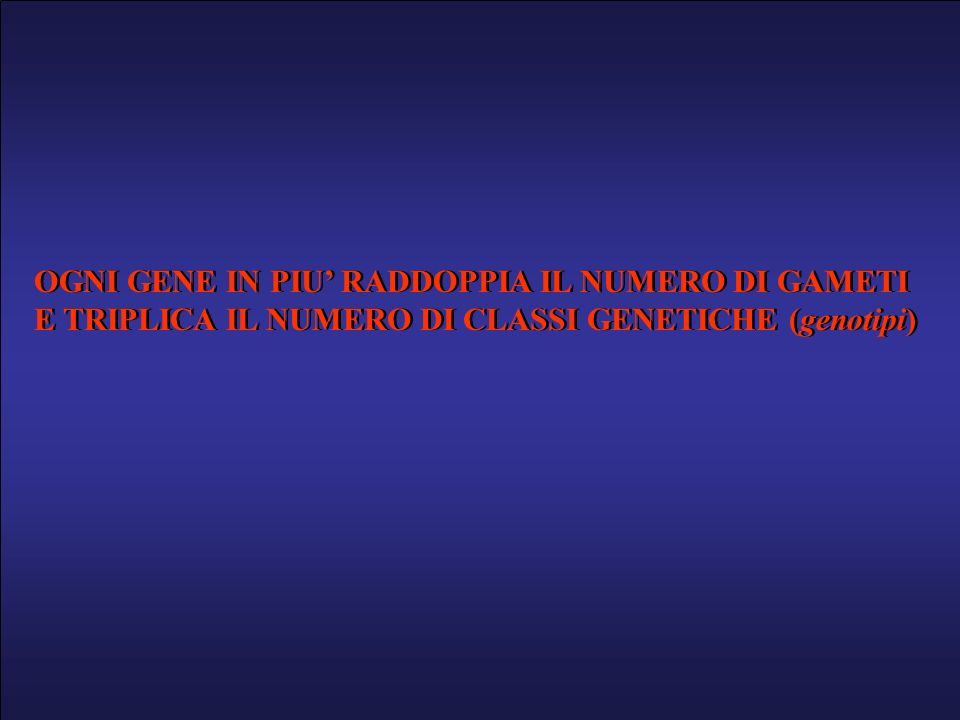 OGNI GENE IN PIU RADDOPPIA IL NUMERO DI GAMETI E TRIPLICA IL NUMERO DI CLASSI GENETICHE (genotipi) OGNI GENE IN PIU RADDOPPIA IL NUMERO DI GAMETI E TR