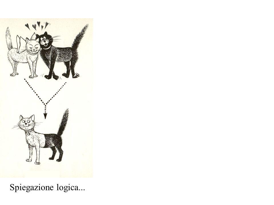 Spiegazione logica...