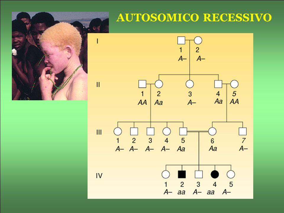 AUTOSOMICO RECESSIVO