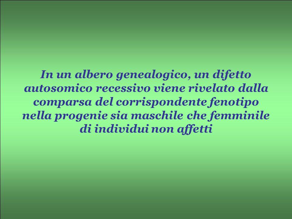 In un albero genealogico, un difetto autosomico recessivo viene rivelato dalla comparsa del corrispondente fenotipo nella progenie sia maschile che fe