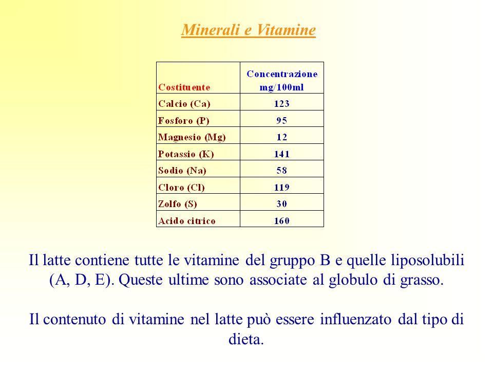 Minerali e Vitamine Il latte contiene tutte le vitamine del gruppo B e quelle liposolubili (A, D, E). Queste ultime sono associate al globulo di grass