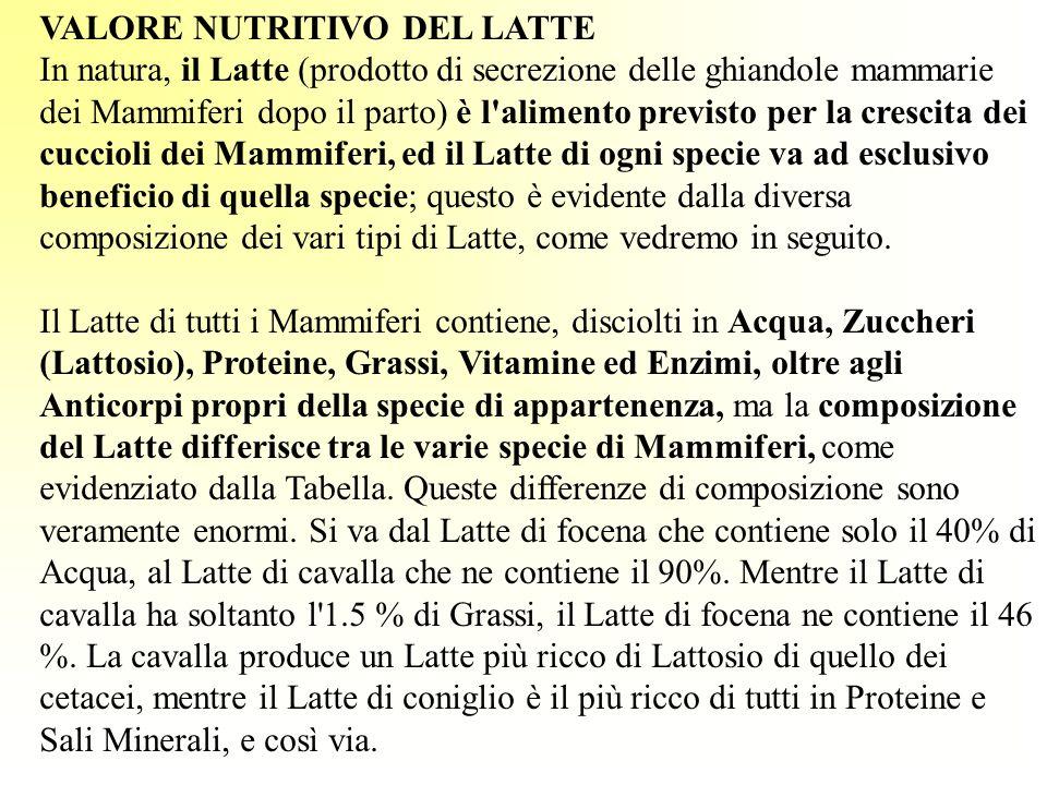 VALORE NUTRITIVO DEL LATTE In natura, il Latte (prodotto di secrezione delle ghiandole mammarie dei Mammiferi dopo il parto) è l'alimento previsto per