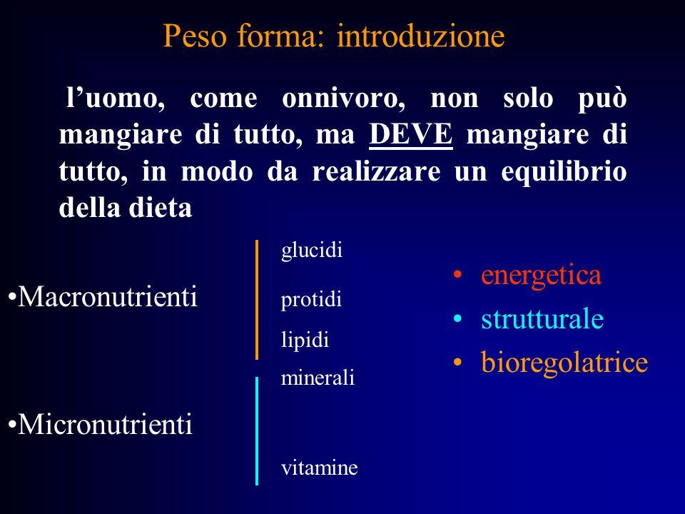 Peso forma: alimentazione FUNZIONENUTRIENTI GLUCIDI ENERGETICA LIPIDI PROTIDI STRUTTURALE MINERALI BIOREGOLATRICE VITAMINE