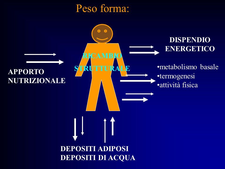 APPORTO NUTRIZIONALE DISPENDIO ENERGETICO metabolismo basale termogenesi attività fisica DEPOSITI ADIPOSI DEPOSITI DI ACQUA Peso forma: RICAMBIO STRUT