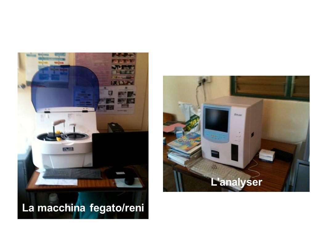 La macchina fegato/reni L'analyser