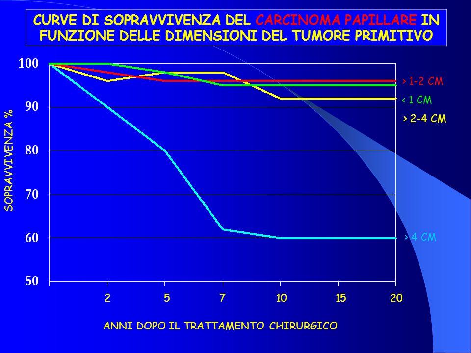 CURVE DI SOPRAVVIVENZA DEL CARCINOMA PAPILLARE IN FUNZIONE DELLE DIMENSIONI DEL TUMORE PRIMITIVO SOPRAVVIVENZA % 271015205 ANNI DOPO IL TRATTAMENTO CH