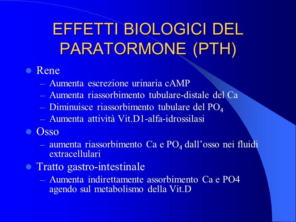 EFFETTI BIOLOGICI DEL PARATORMONE (PTH) Rene – Aumenta escrezione urinaria cAMP – Aumenta riassorbimento tubulare-distale del Ca – Diminuisce riassorb