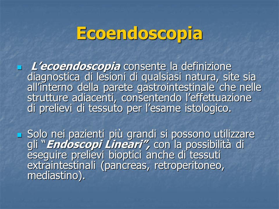 Ecoendoscopia Lecoendoscopia consente la definizione diagnostica di lesioni di qualsiasi natura, site sia allinterno della parete gastrointestinale ch
