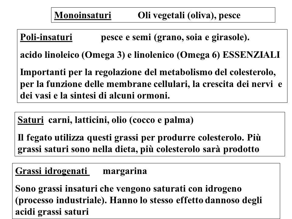 Monoinsaturi Oli vegetali (oliva), pesce Poli-insaturi pesce e semi (grano, soia e girasole). acido linoleico (Omega 3) e linolenico (Omega 6) ESSENZI
