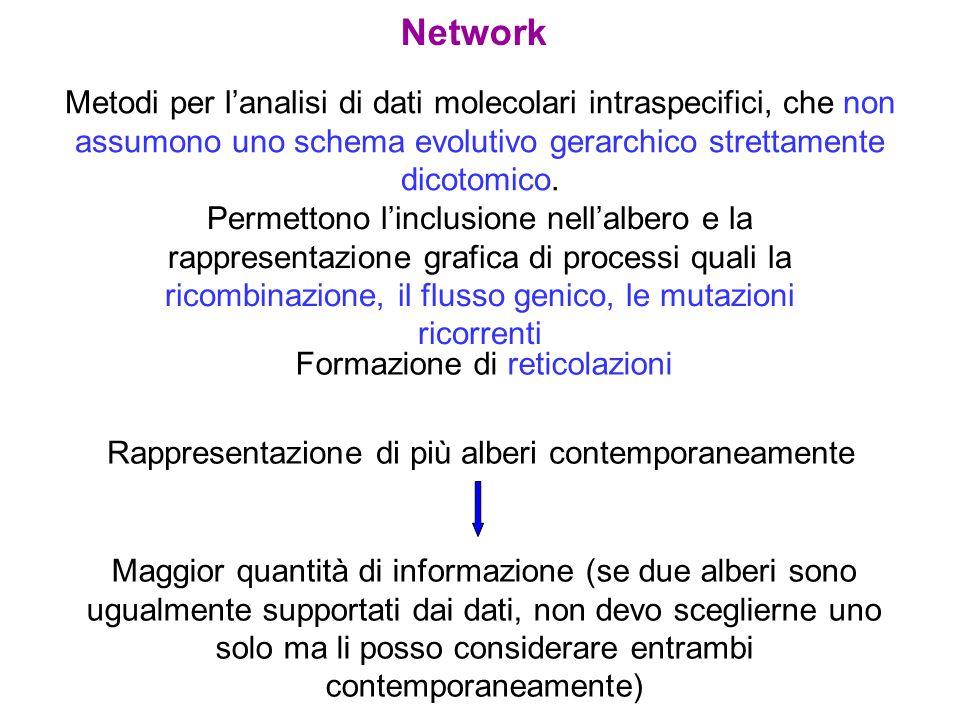 Network Metodi per lanalisi di dati molecolari intraspecifici, che non assumono uno schema evolutivo gerarchico strettamente dicotomico. Permettono li