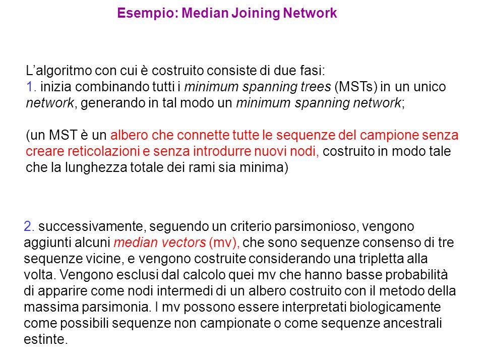 Esempio: Median Joining Network Lalgoritmo con cui è costruito consiste di due fasi: 1. inizia combinando tutti i minimum spanning trees (MSTs) in un